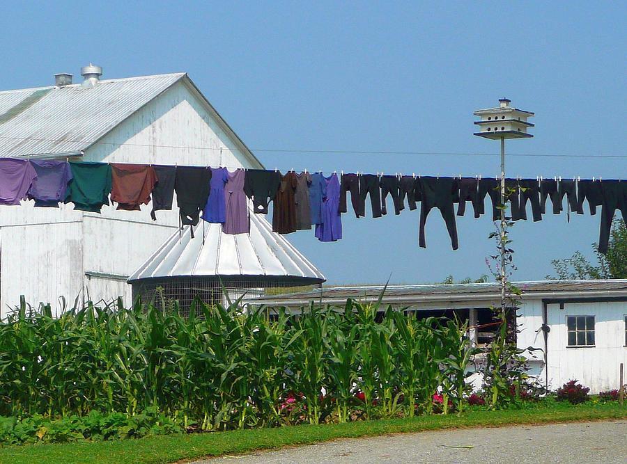Yard Photograph - Amish Laundry by Lori Seaman