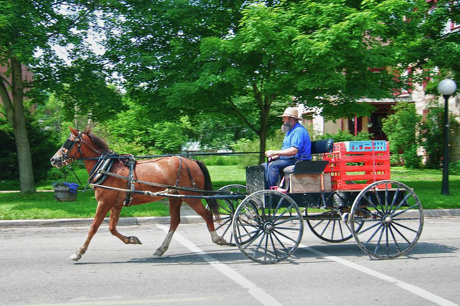 Amish Merchant 5671 Photograph