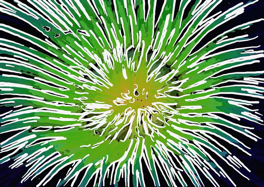 Starfish Painting - An Abstract Scene Of Sea Anemone 2 by Lanjee Chee