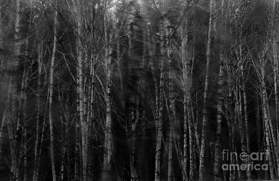 Apparition Photograph