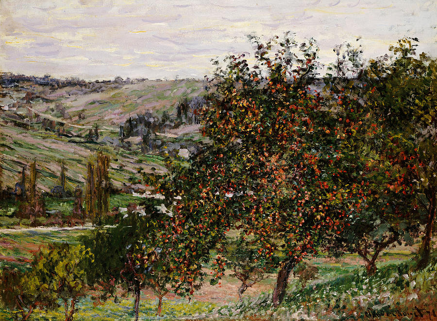 French Painting - Apple Trees Near Vetheuil by Claude Monet