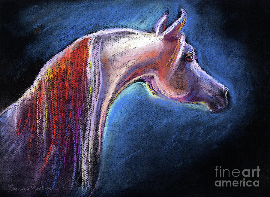 Pastel Arabian Horse Painting - Arabian Horse Equine Painting by Svetlana Novikova