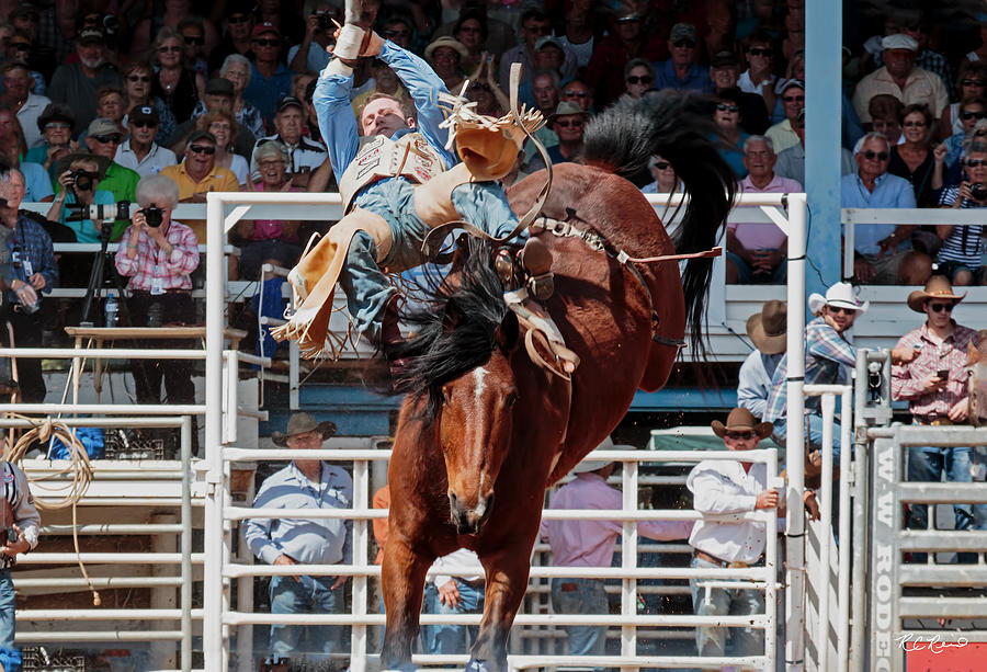 Arcadia Championship Rodeo Bronco Riding What A Buck Photograph By
