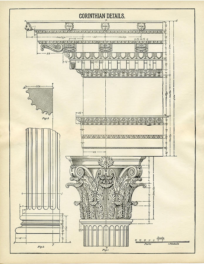 Architecture Detail Corinthian Columns Drawing By Michelle