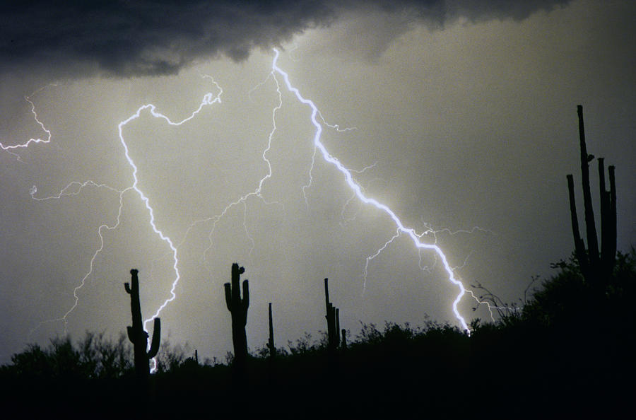 Desert Photograph - Arizona Desert Storm by James BO  Insogna