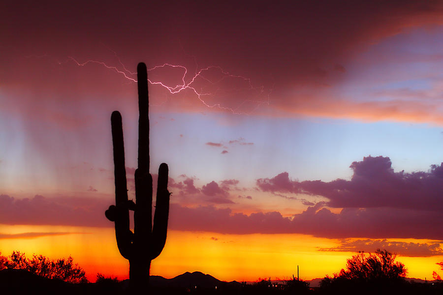 Arizona Photograph - Arizona Lightning Sunset by James BO  Insogna