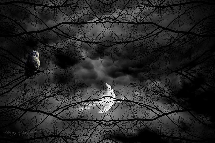 Owl Photograph - Athenas Bird by Lourry Legarde