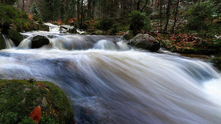 Autumn At The Bode, Harz Photograph