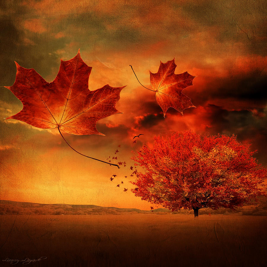 Autumn Blaze Photograph By Lourry Legarde