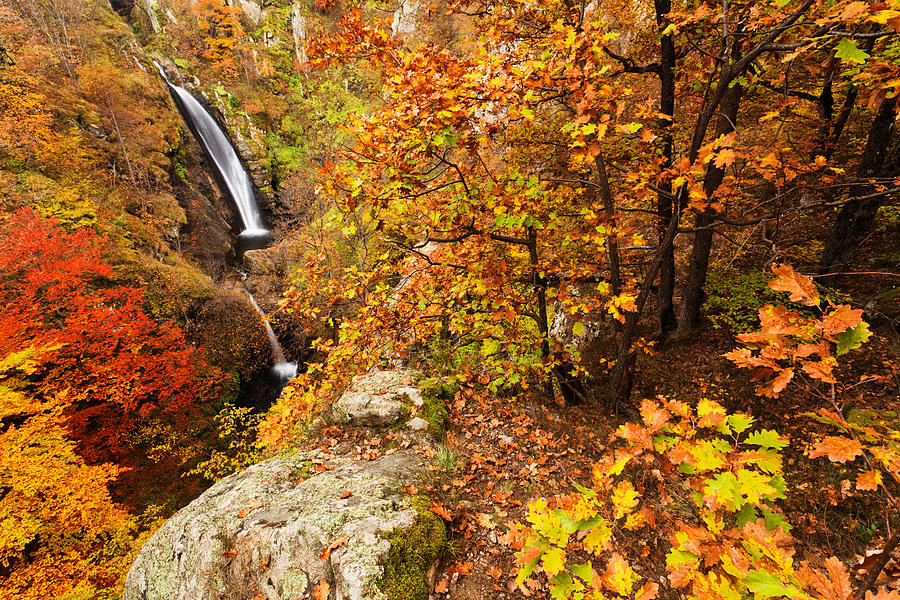 Waterfall Photograph - Autumn Falls by Evgeni Dinev