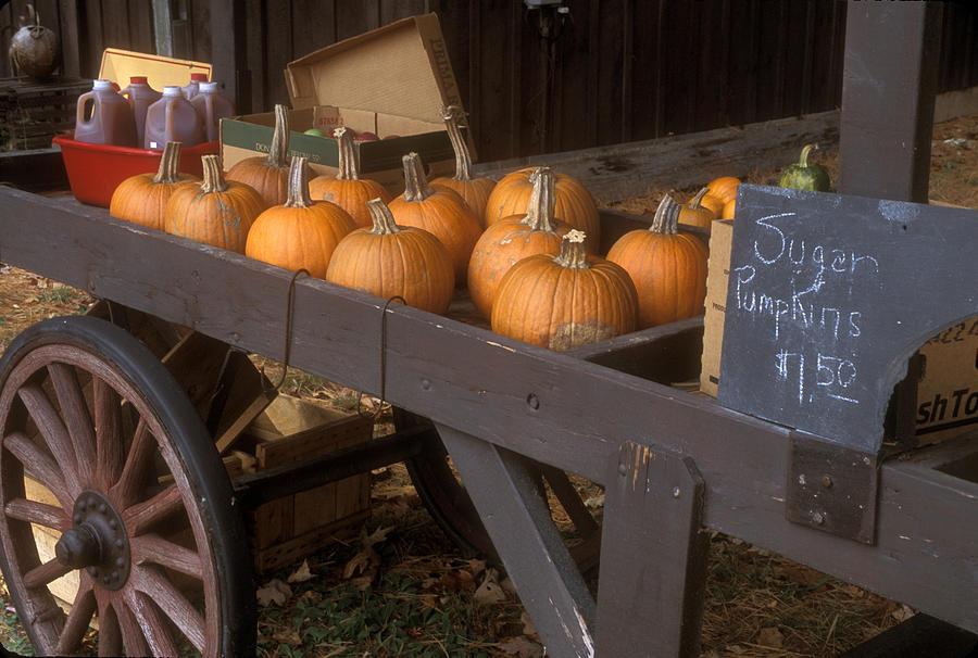 Farm Photograph - Autumn Farmstand by John Burk