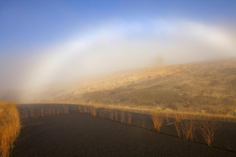 Fog Bow Photograph - Autumn Fog Bow by Mike  Dawson