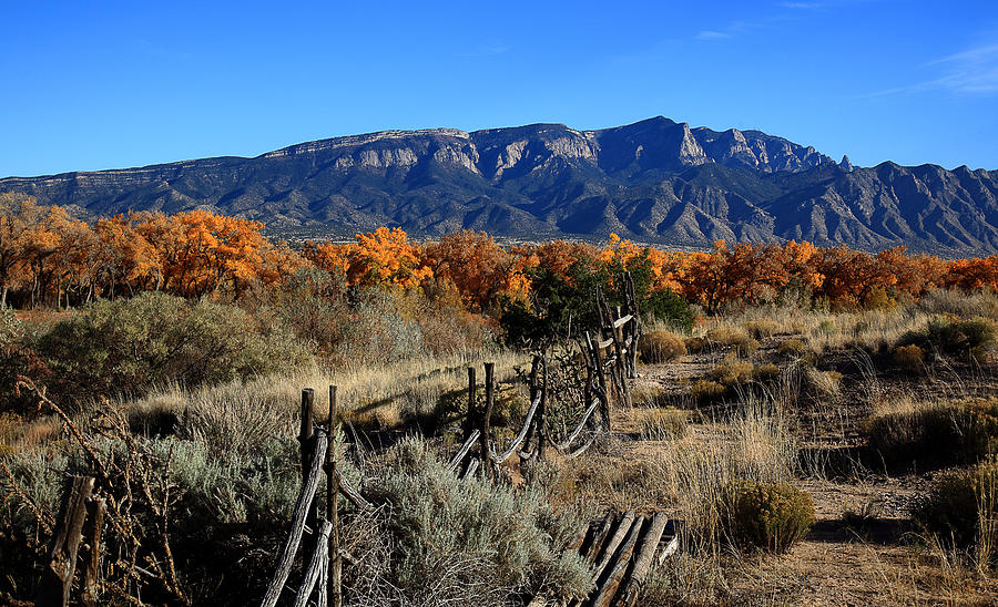 Albuquerque Photograph - Autumn In New Mexico by Anthony Sekellick