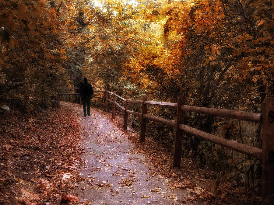Autumn Photograph - Autumn In Stride by Jessica Jenney