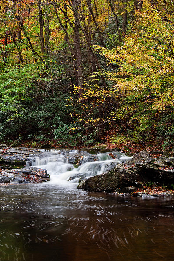 Little River Photograph - Autumn In The Smokies by Andrew Soundarajan