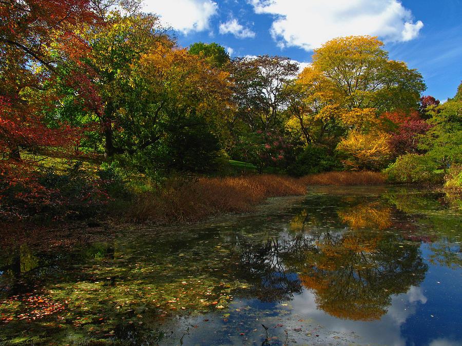 Autumn Photograph - Autumn Landscape by Juergen Roth