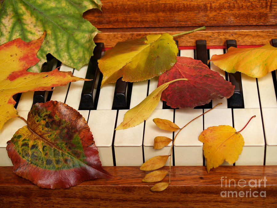 Piano Photograph - Autumn Leaves Tickle The Ivories by Anna Lisa Yoder