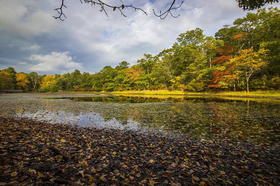 Autumn Pond Photograph