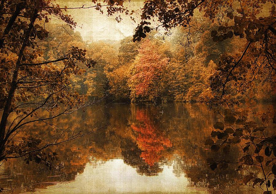 Autumn Reflected Photograph