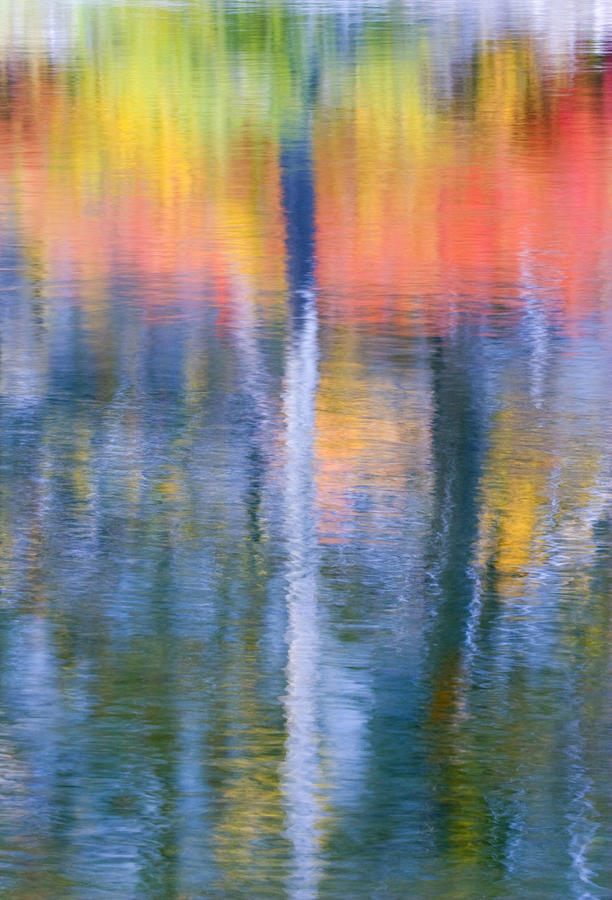 Reflection Photograph - Autumn Resurrection by Mike  Dawson