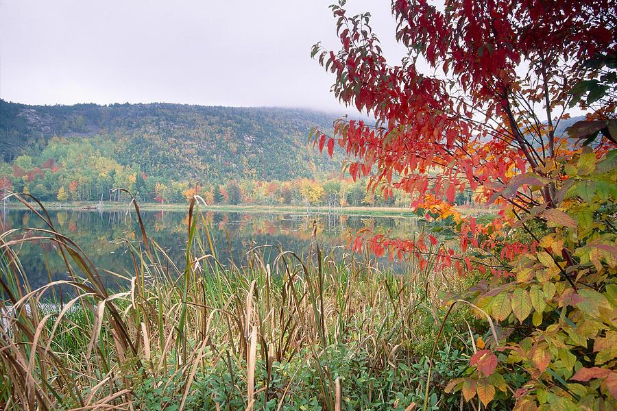 Autumn Scenic Acadia National Park Maine Photograph
