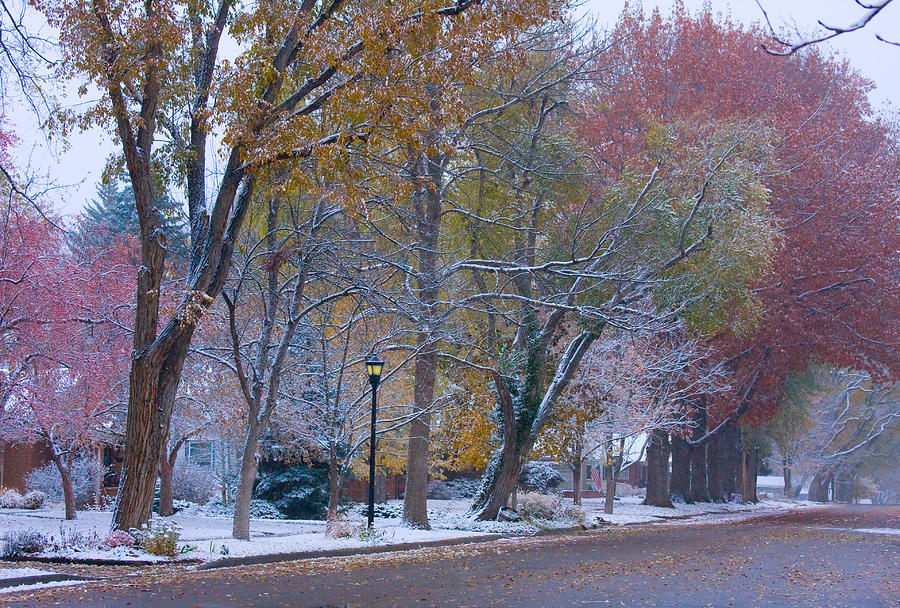 Country Photograph - Autumn Snow by James BO  Insogna