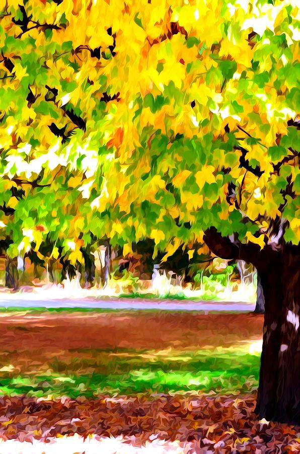 Fall Leaves Trees Painting - Autumn Trees 6 by Lanjee Chee