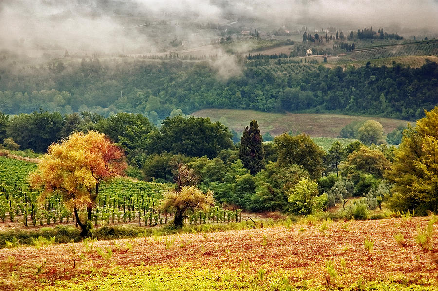Fall Photograph - Autumnal Hills by Silvia Ganora