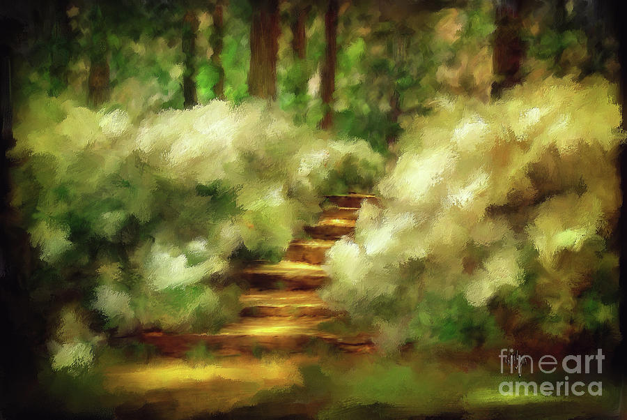 Azalea Stairs Photograph