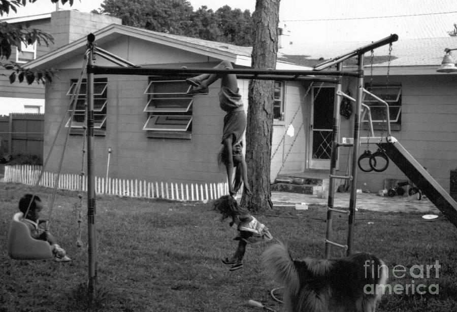 Backyard Swing Set..... Photograph