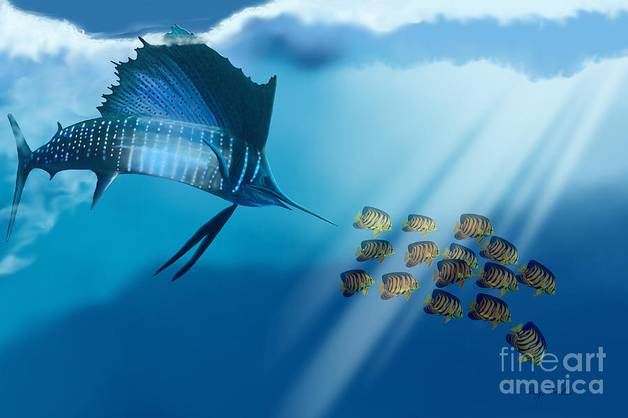 Sailfish Painting - Bahama Beauty by Corey Ford