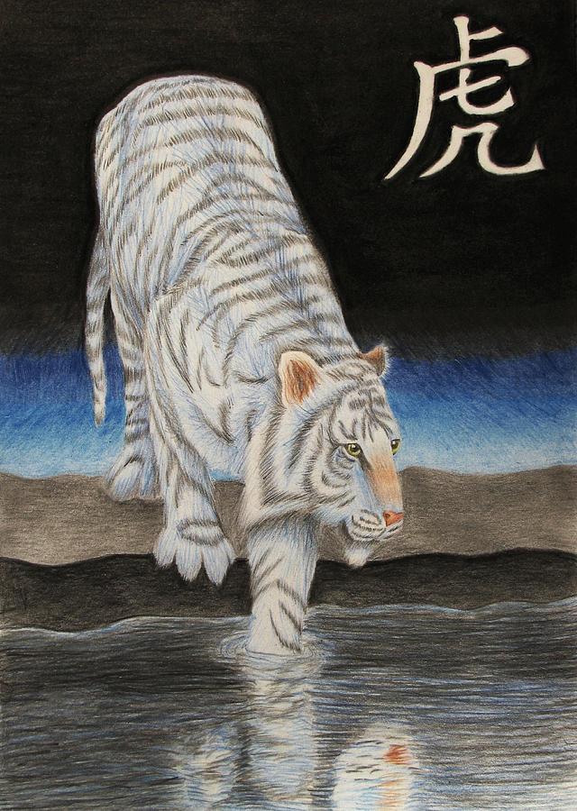Bai Drawing - Bai Hu by Lauren Cawthron