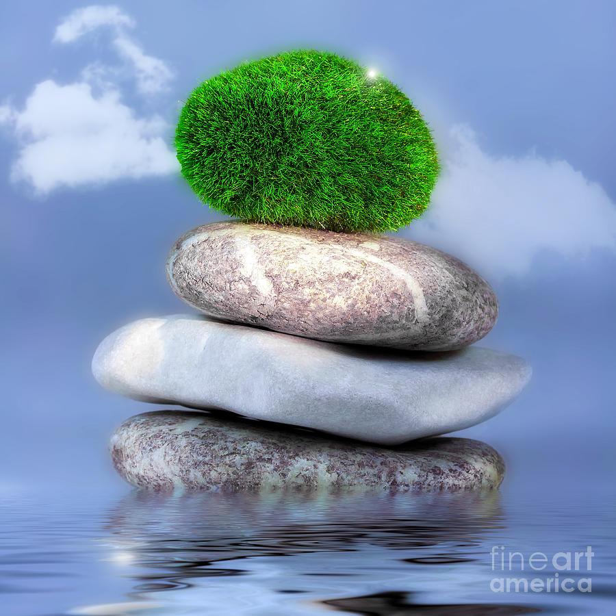 Balance Photograph - Balance by VIAINA Visual Artist