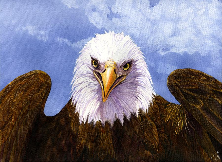 Eagle Painting - Bald Eagle by Catherine G McElroy