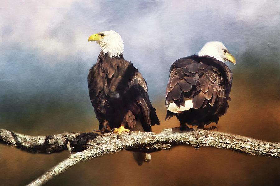 Bald Eagle Watchmen Digital Art