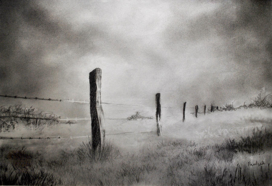 barbed wire drawing - photo #36