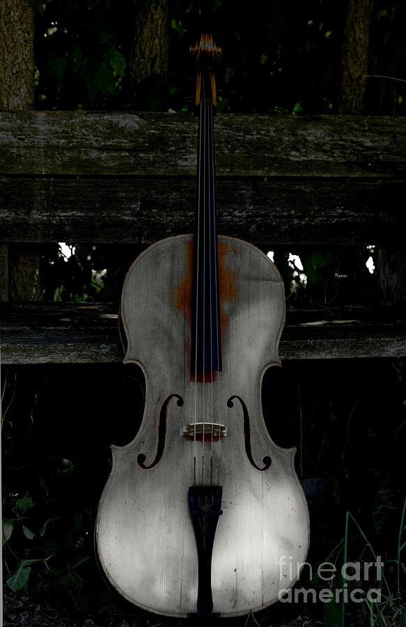 Barnyard Cello Photograph
