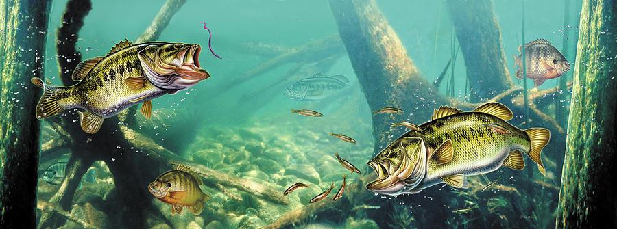 Jon Q Wright Painting - Bass Lake by JQ Licensing