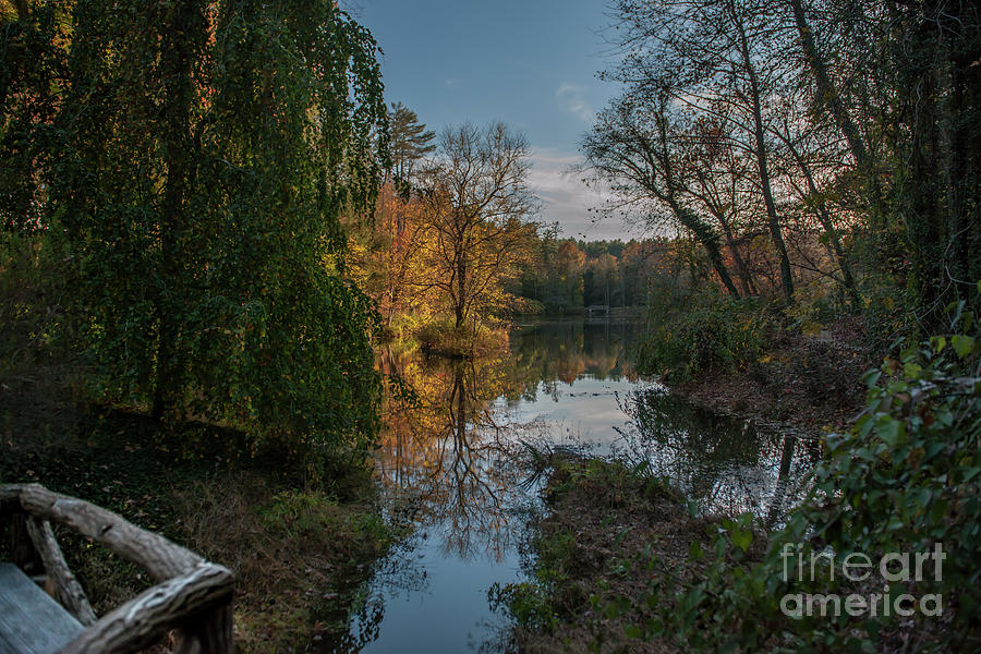 Bass Pond In Asheville Nc Photograph