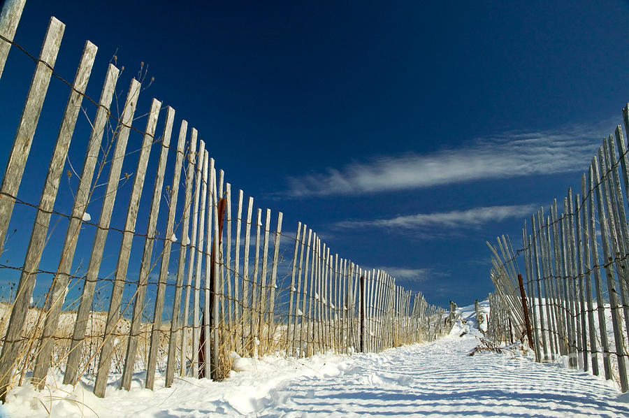 Beach Fence Photograph - Beach Fence And Snow by Matt Suess