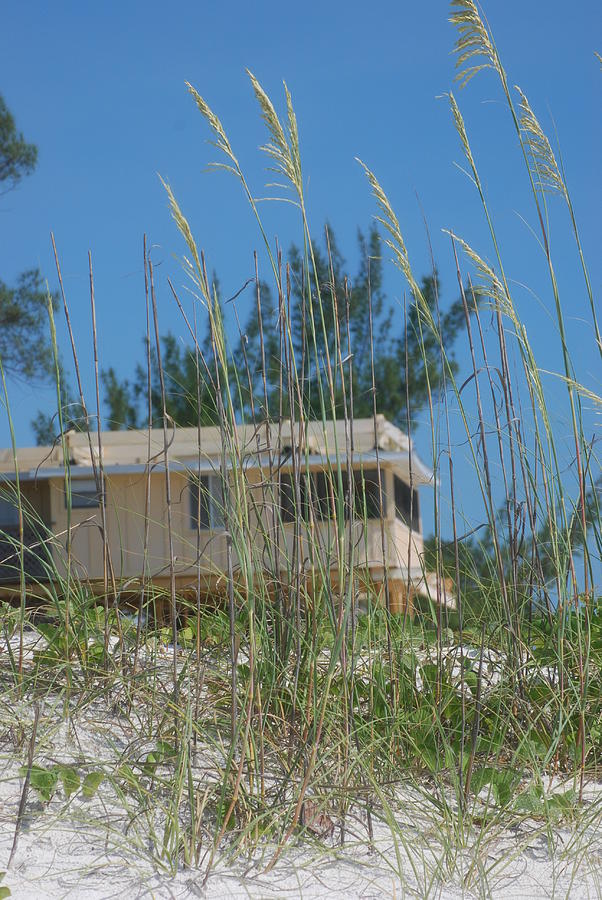 Sea Oats Beach House