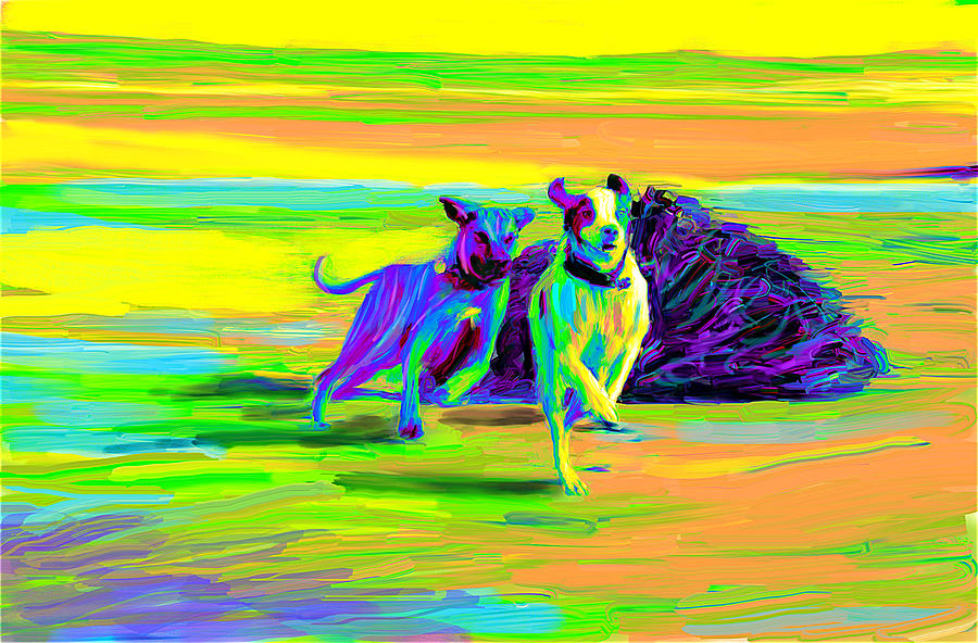 Dogs Digital Art - Beach Race by Karen Derrico