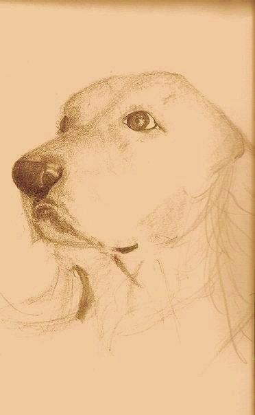 Beautiful Golden Drawing