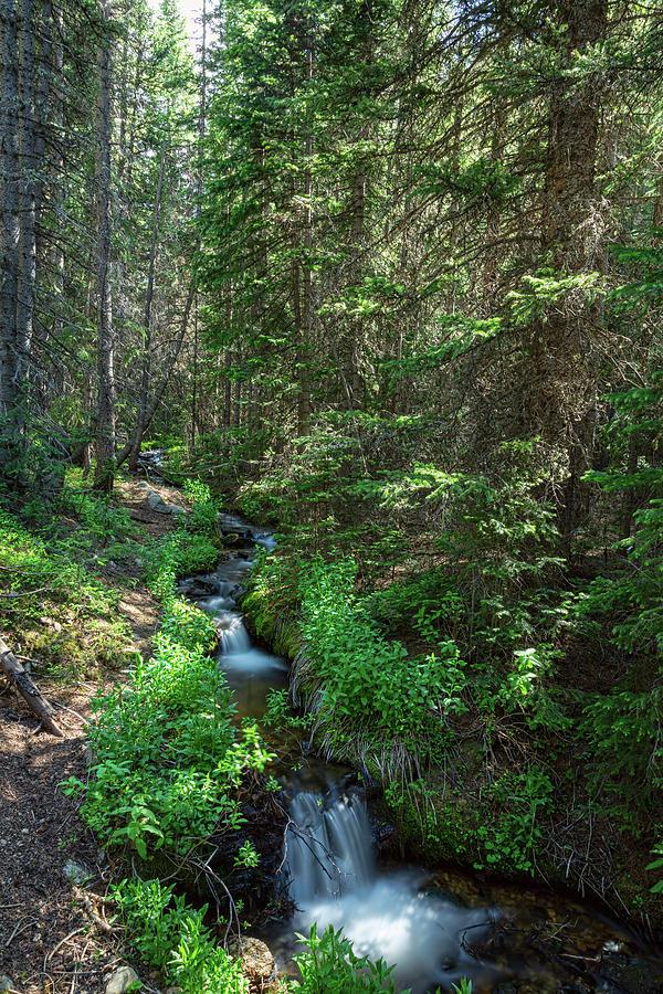 Beautiful Mountain Stream Hike Photograph