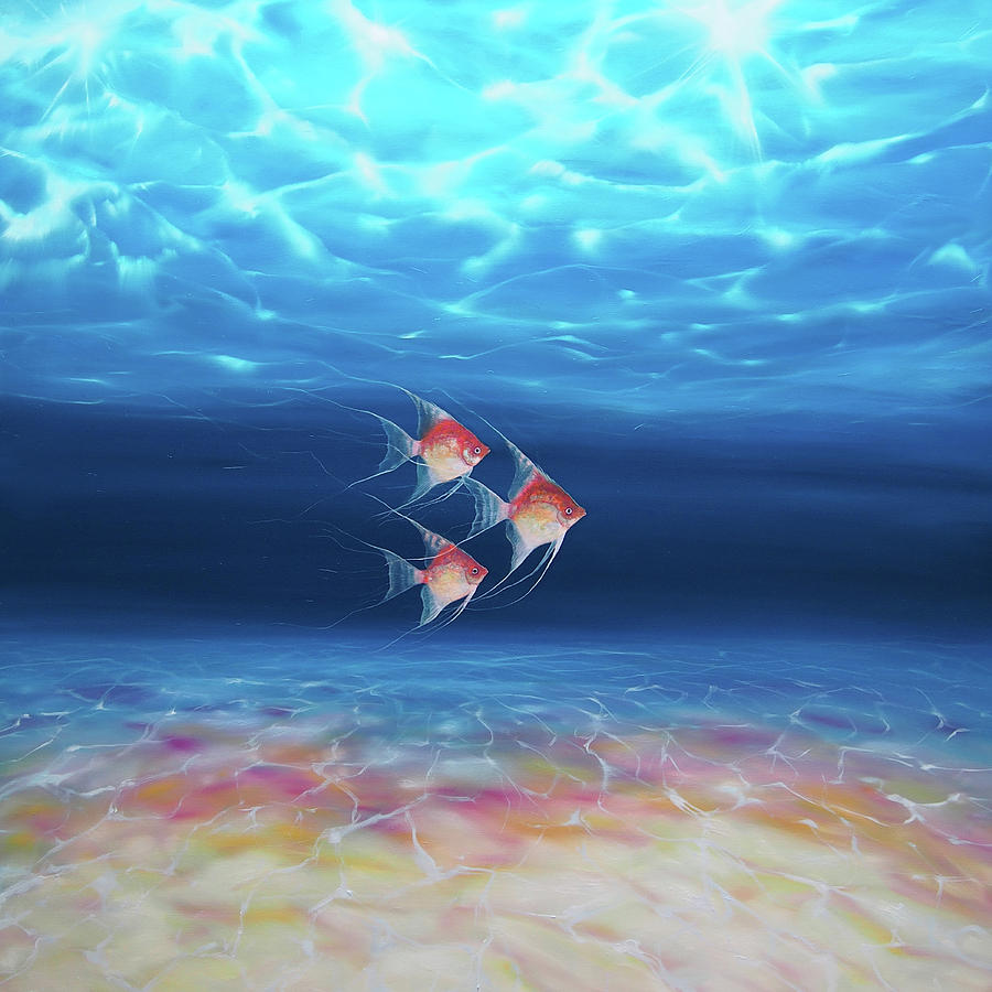 Beautiful trio under the sea a underwater seascape with for Fish under the sea