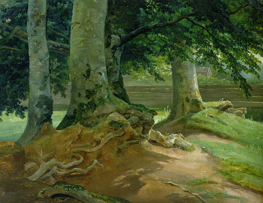 Beech Painting - Beech Trees In Frederiksdal Near Copenhagen by Christian Ernst Bernhard Morgenstern