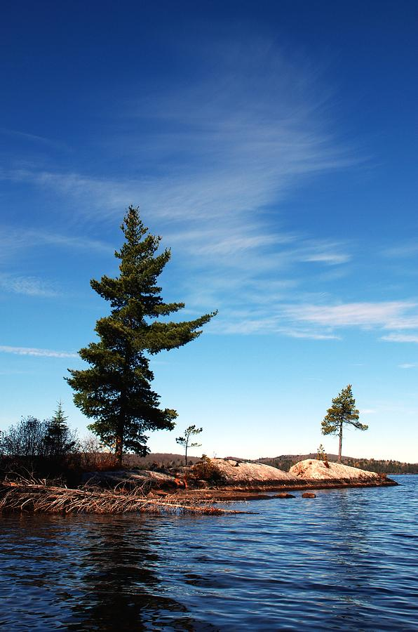 Canoe Lake Algonquin Park Photograph - Being Together by David Hickey