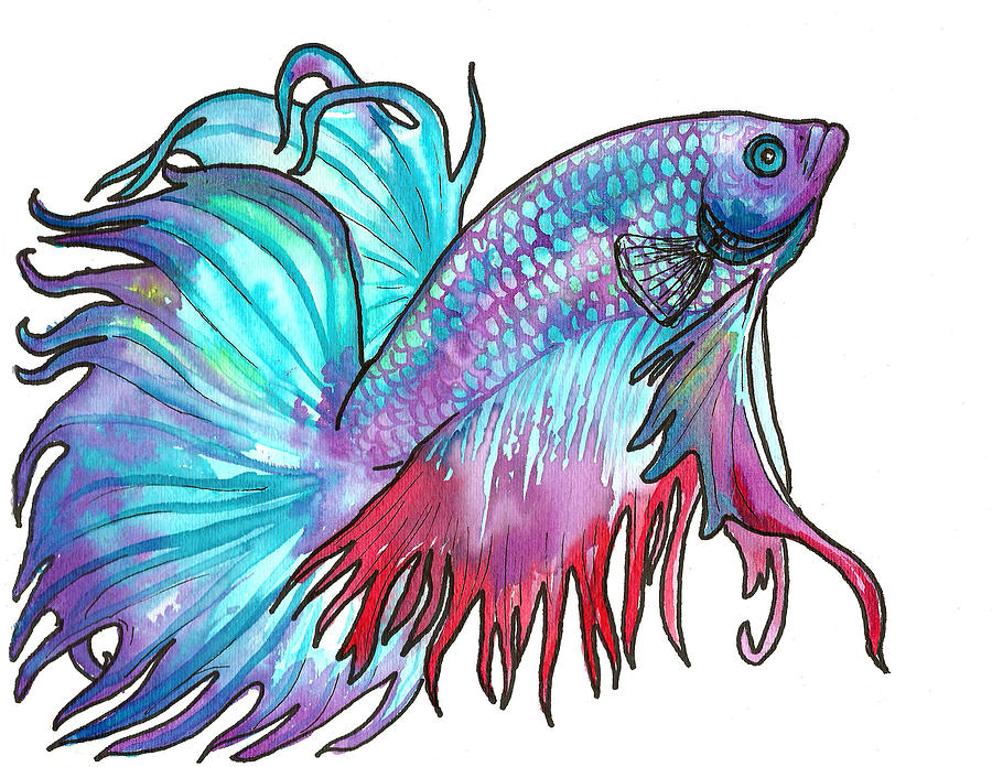 Fish Painting - Betta Fish by Jenn Cunningham