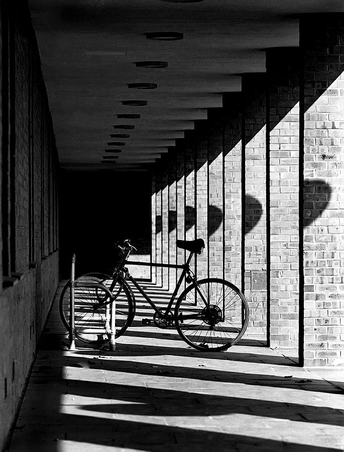 B&w Bicycle fine Art Detail Photograph - Bicycle And Shadows by George Morgan