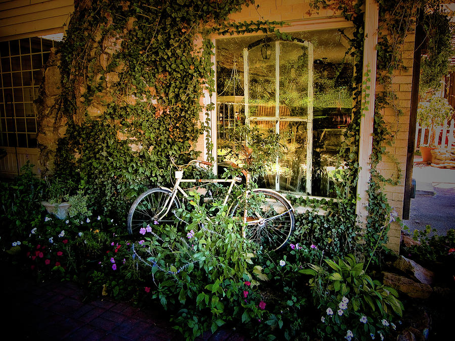 Bicycle In Bloom Photograph